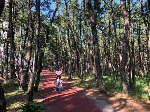 シェラトン宮崎でサイクリング