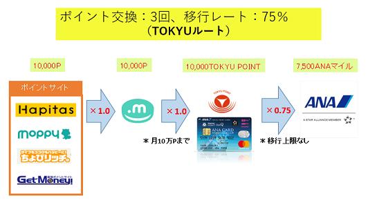 ポイントサイトからTOKYUルートでANAマイルに移行する方法解説