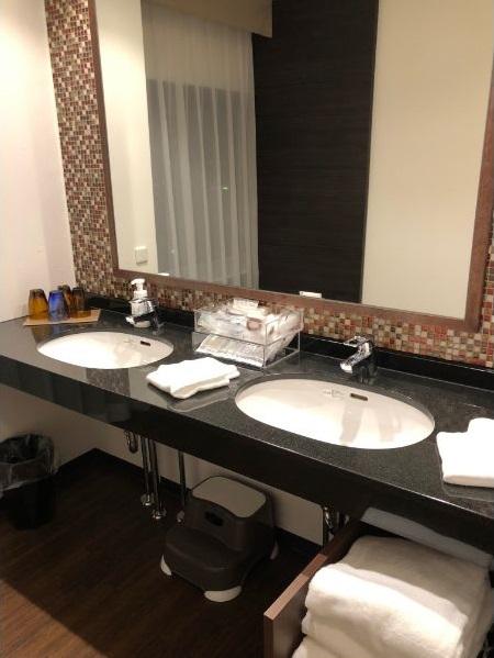 パークフロントホテルの洗面所