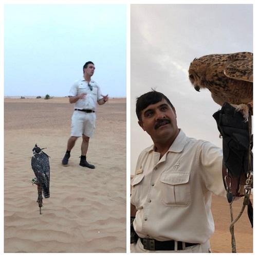 アルマハのアクティビティーの鷹狩の説明
